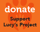 lucys project donate and help support us